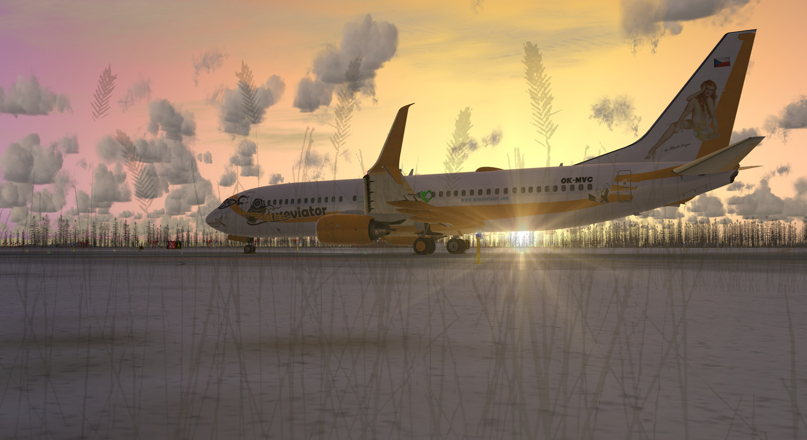 Mouseviator repaint for PMDG 737-800 NGXu