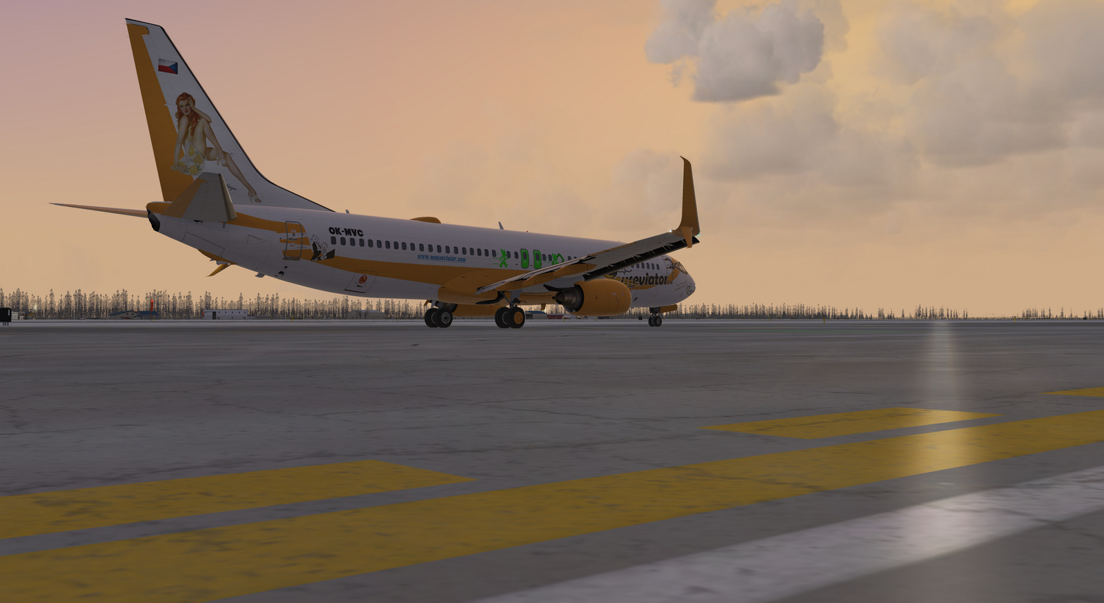 Mouseviator repaint for PMDG 737-800 NGXu, screenshot 20/20